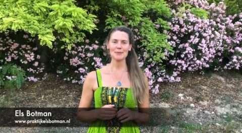 Activeer Zelfheling: Stress reducerende technieken – De Drievoudige Verwarmer Smoothie
